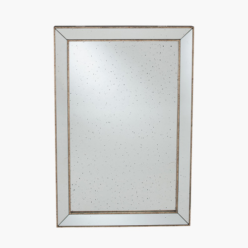 Antique Gold Metal and Glass Rectangle Mirror
